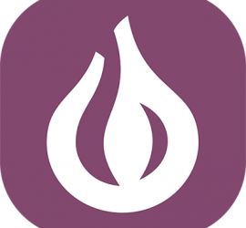 Onion Company Icon